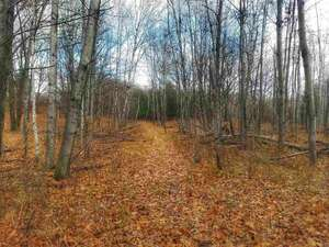 Land for Sale, ListingId:55159755, location: TBD Victoria Park Addition Iron Mountain 49801