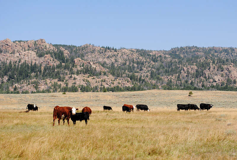 Investment for Sale at Deer Creek Ranch Casper, Wyoming 82604 United States