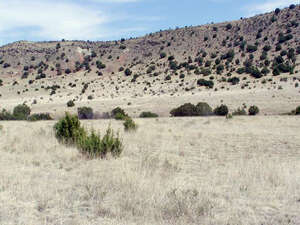 Featured Property in Hondo, NM 88336