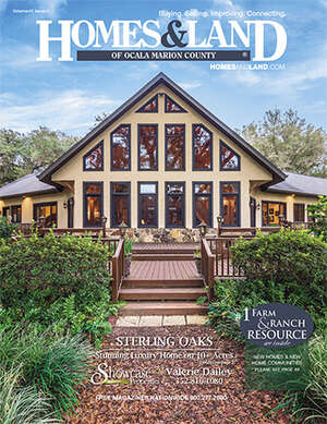 HOMES & LAND Magazine Cover. Vol. 41, Issue 01, Page 27.
