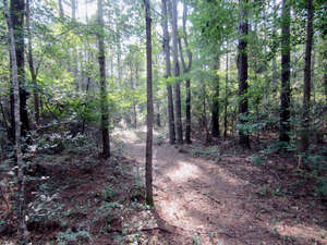 Featured Property in Sumrall, MS 39482