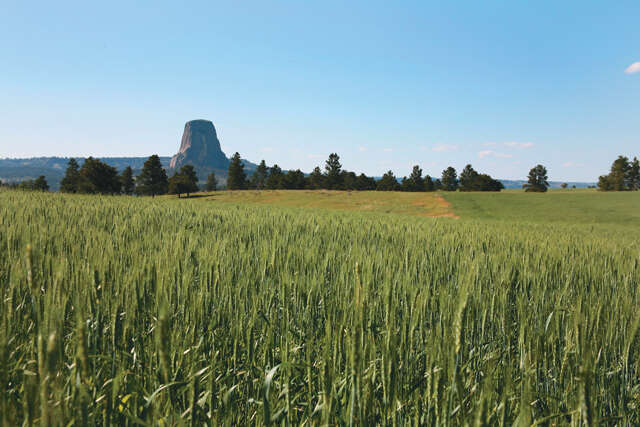 Investment for Sale at 406 Wy-24 Devils Tower, Wyoming 82714 United States