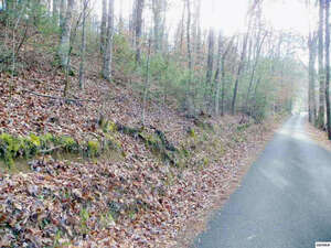 Land for Sale, ListingId:36603641, location: Lot 2 Reagan Hollow Road Pigeon Forge 37863