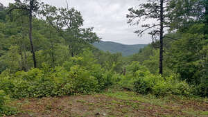 Featured Property in Mills River, NC 28759