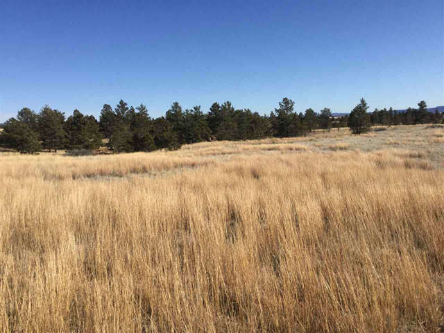 Real Estate for Sale, ListingId:38648718, location: tbd Mountain Drive Custer 57730