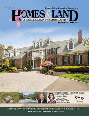 HOMES & LAND Magazine Cover. Vol. 06, Issue 08, Page 19.