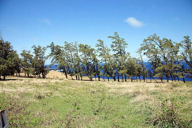 Land for Sale at Uli Road Hawi, Hawaii 96719 United States