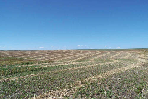 Investment for Sale at Nelson Farm Newell, South Dakota 57760 United States