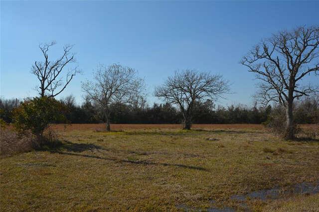 Land for Sale at 0 Fm 646 S Santa Fe, Texas 77510 United States
