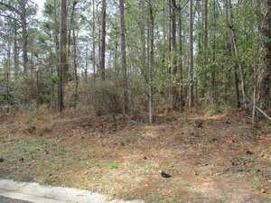 Land for Sale, ListingId:63133181, location: WIREGRASS CIRCLE Moultrie 31768