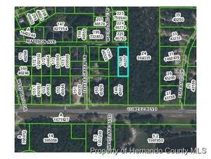 Featured Property in Ridge Manor, FL 33523