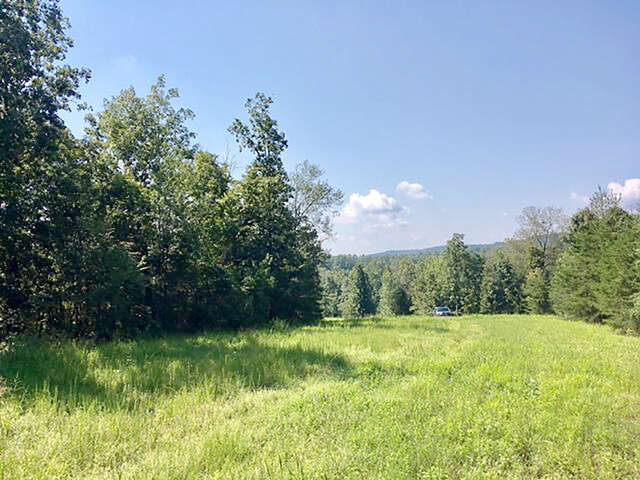 Land for Sale at 10417 Bentwood Cove Dr Apison, Tennessee 37302 United States