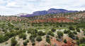 Real Estate for Sale, ListingId:32747183, location: 520 Red Moon Drive Sedona 86336