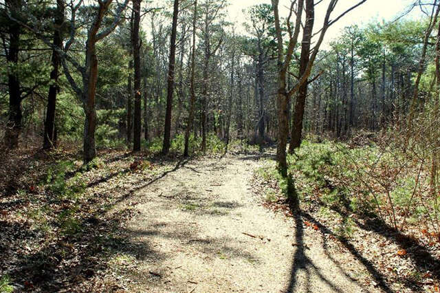 Land for Sale at 147 Peppercorn Lane Cotuit, Massachusetts 02635 United States