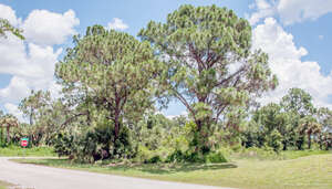Featured Property in Palm Bay, FL 32908