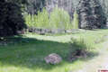 Real Estate for Sale, ListingId:44014720, location: X Puma Place Pagosa Springs 81147