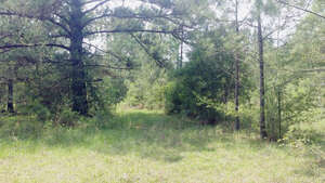 Featured Property in Poplarville, MS 39470