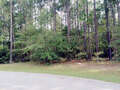 Real Estate for Sale, ListingId:41234593, location: 000 Green Timber Loop Hattiesburg 39402