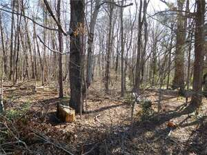 Land for Sale, ListingId:52463565, location: 0 Willamont Street Kernersville 27284