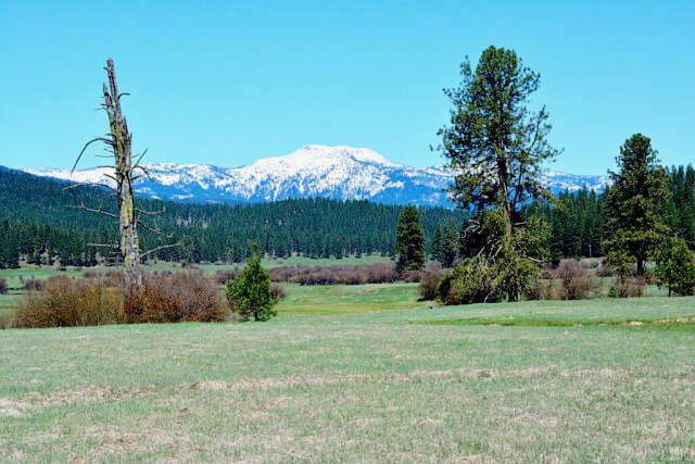 Investment for Sale at Tbd Hwy 95 New Meadows, Idaho 83654 United States