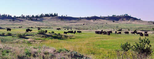 Single Family for Sale at Zimmerschied Ranch Sundance, Wyoming 82729 United States