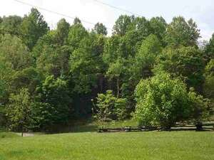 Featured Property in Thorn Hill, TN 37881