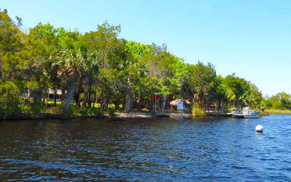 Single Family for Sale at Dan May Private Island Suwannee, Florida 32692 United States