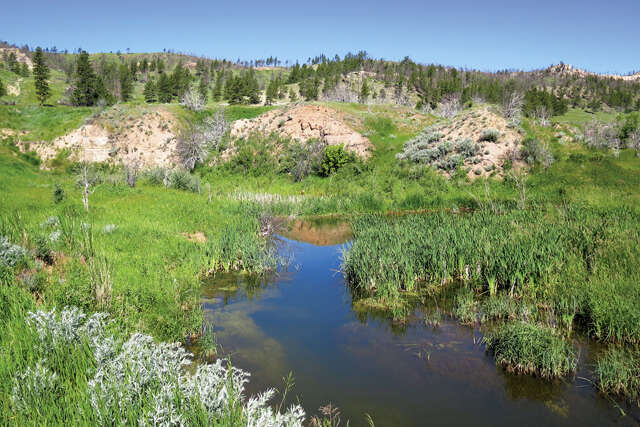 Investment for Sale at Oil Creek Rd Newcastle, Wyoming 82701 United States