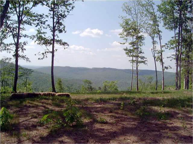 Land for Sale at 0 Hwy 111 Spencer, Tennessee 38585 United States