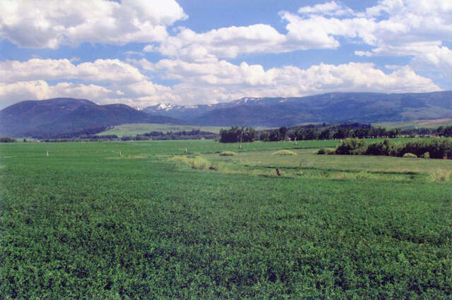 Land for Sale at Gooch Hill Ranch Gallatin Gateway, Montana 59730 United States