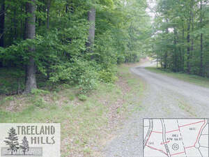Real Estate for Sale, ListingId: 40139679, Berkeley Springs, WV  25411