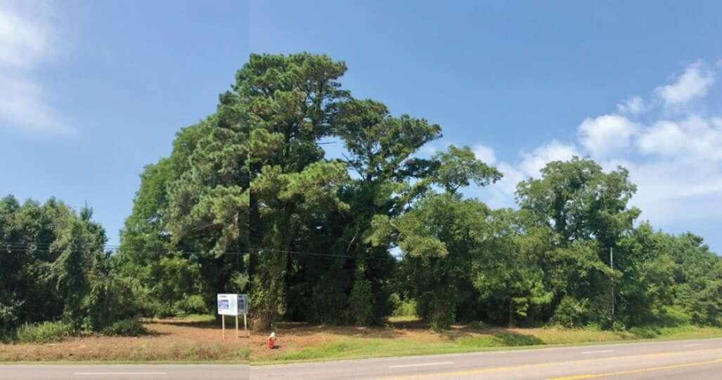 Land for Sale at 8934 Caratoke Highway Point Harbor, North Carolina 27964 United States