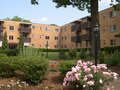 Apartments for Rent, ListingId:8922027, location: 74 South Fremont Ave Pittsburgh 15202