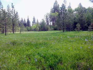 Real Estate for Sale, ListingId: 38981946, McCall, ID  83638