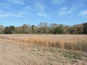 Land for Sale, ListingId:49612053, location: 15 CANDLER COURT Hahira 31632