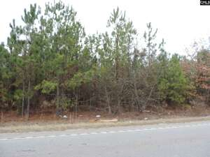 Land for Sale, ListingId:49118173, location: 1947 Old Two Notch Road Lexington 29073