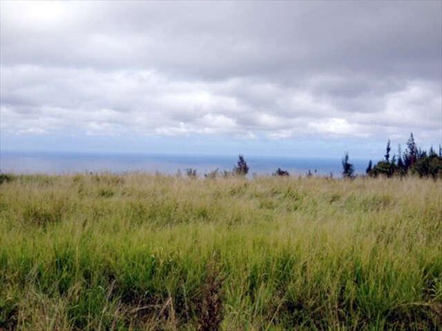 Land for Sale at Paauhau Street Honokaa, Hawaii 96727 United States