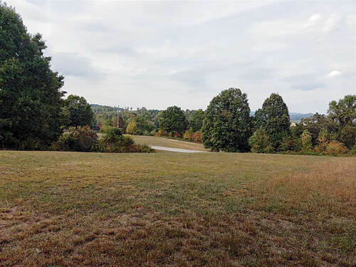 Real Estate for Sale, ListingId:41560647, location: Lot 186 Pheasant View Rutledge 37861