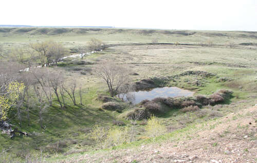 Investment for Sale at Gudahl Ranch Wheatland, Wyoming 82201 United States