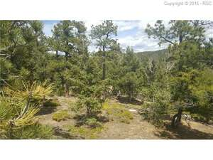 Land for Sale, ListingId:38168506, location: Waterfall Loop Manitou Springs 80829