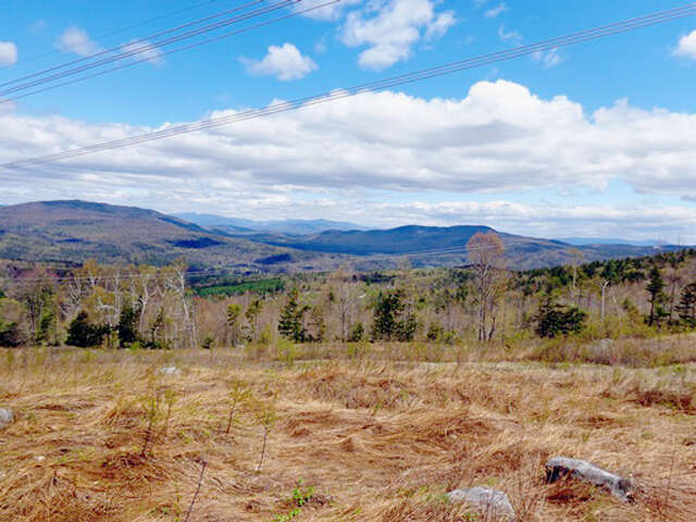 Investment for Sale at Off Gove Road Alexandria, New Hampshire 03222 United States