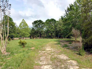 Featured Property in Sopchoppy, FL 32358