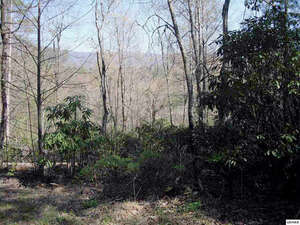 Land for Sale, ListingId:38151295, location: LOT 31 BROOKE HOLLOW LN Sevierville 37862