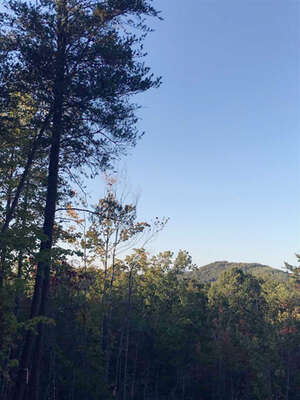 Featured Property in Bostic, NC 28018