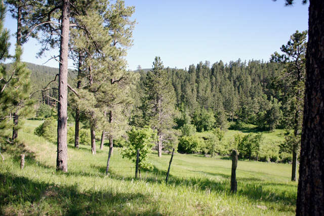 Additional photo for property listing at 327 Huseby Road  Hulett, Wyoming 82720 United States