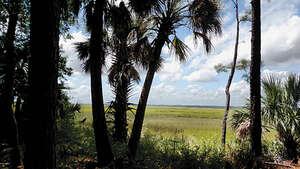 Featured Property in Dataw Island, SC 29920