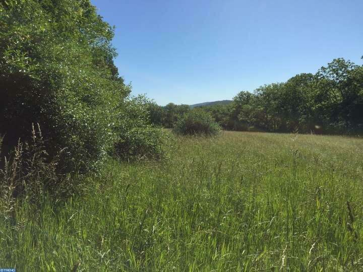 Land for Sale at 1 Funks Mill Road Riegelsville, Pennsylvania 18077 United States