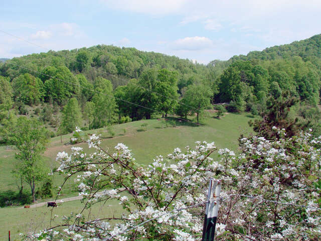 Single Family for Sale at 407 Spicewood Trail Mars Hill, North Carolina 28754 United States