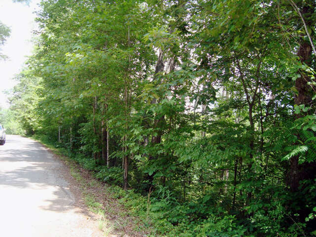 Real Estate for Sale, ListingId:39539167, location: White Oak Lane Lot #12 Tryon 28782