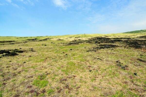 Additional photo for property listing at Belt Hwy  Naalehu, Hawaii 96772 United States